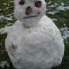 Snow Midget